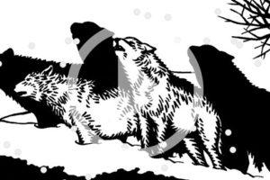 TVWork-Animaux-Musiciens-loups